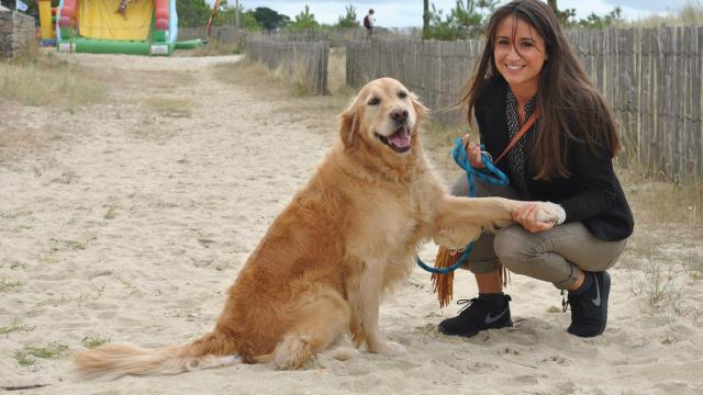 Dog Sitting : une méthode pour gagner de l'argent